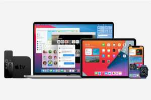 Apple report card: How we grade everything released in 2020