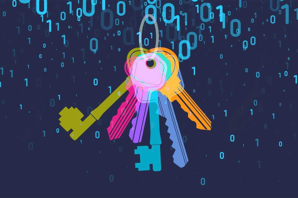 keys on a keychain / key ring / password management / binary code overlay
