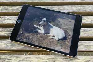 Walmart shaves $125 off the 128GB iPad mini