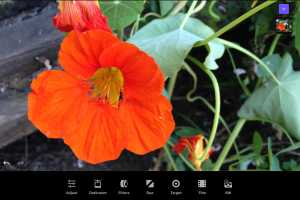 Enlight Photofox for iOS review: Transform your pictures into works of art
