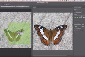 Adobe Photoshop CC 2019 review: Popular features reach new levels for a streamlined workflow