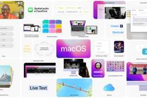 macOS Monterey: Update now or wait?